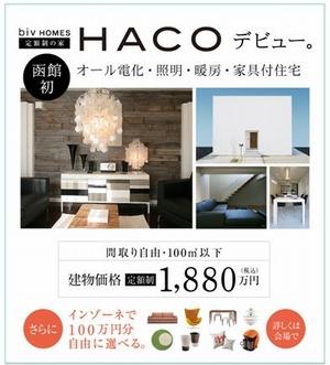 HACO.jpg