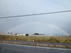 虹を3回見ました!!