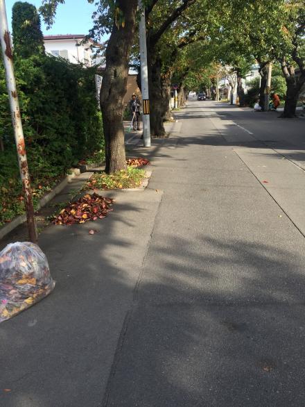 桜ヶ丘通の清掃