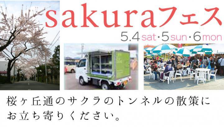 sakuraフェス開催!